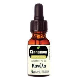 Cinnamon (Cinnamomum zeylanicum) 5 mL