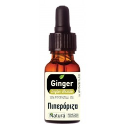 Ginger (Zingiber officinalis) 5 mL
